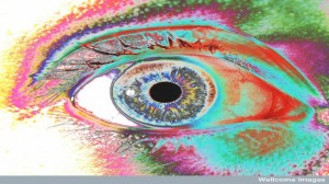 human eye 300x168 More Reflections on Business