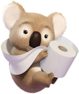 Lovely koala with Cushelle toilet paper - SCA
